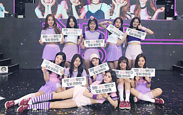 IOI Dikabarkan Akan Reuni Dan Siap Menggelar Konser Di Akhir Tahun